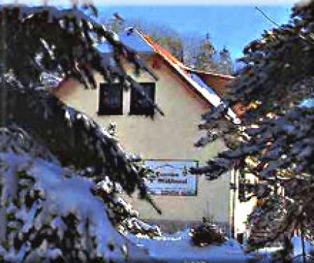 Pension Pension Talmühle_winter
