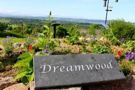 Dreamwood Bed & Breakfast