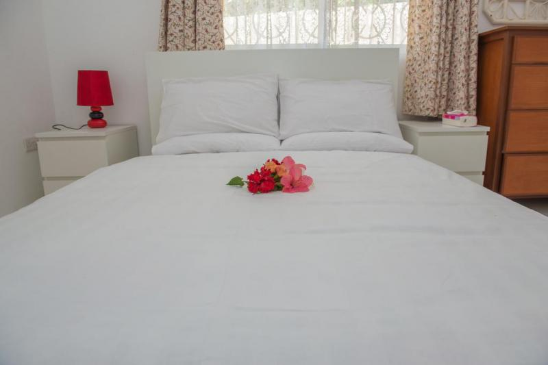 Cotton rose self catering  3